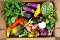 Community Supported Agriculture - CSA